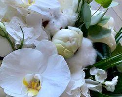 Amour de Fleurs - Soisy-sous-Montmorency - Composition florale